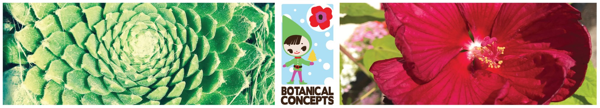 Botanical Concepts