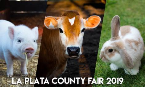 What to Know: La Plata County Fair 2017