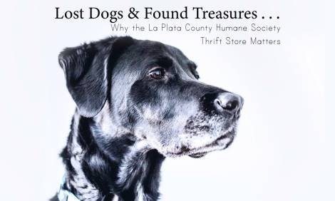 Lost Dogs & Found Treasures: Why the LPCHS Thrift Store Matters