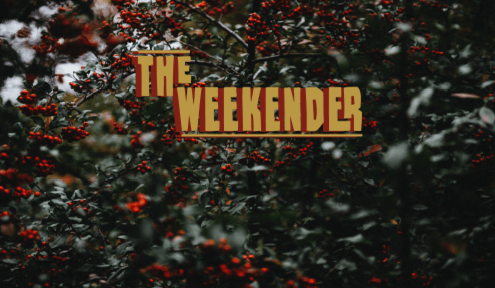 The Weekender // Novermber 2nd - 4th