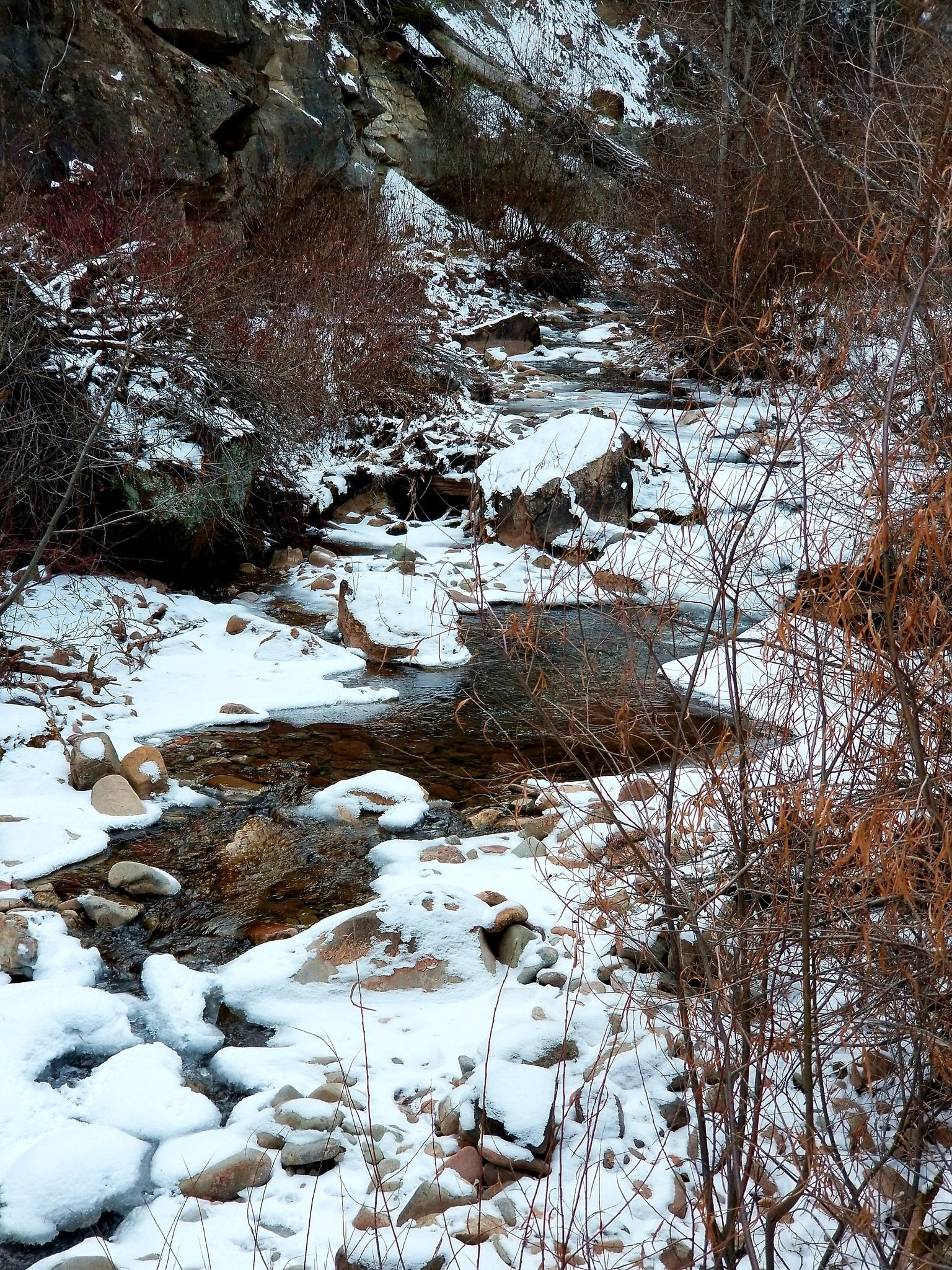 Creek Along side the Colorado Trail to Gusy's