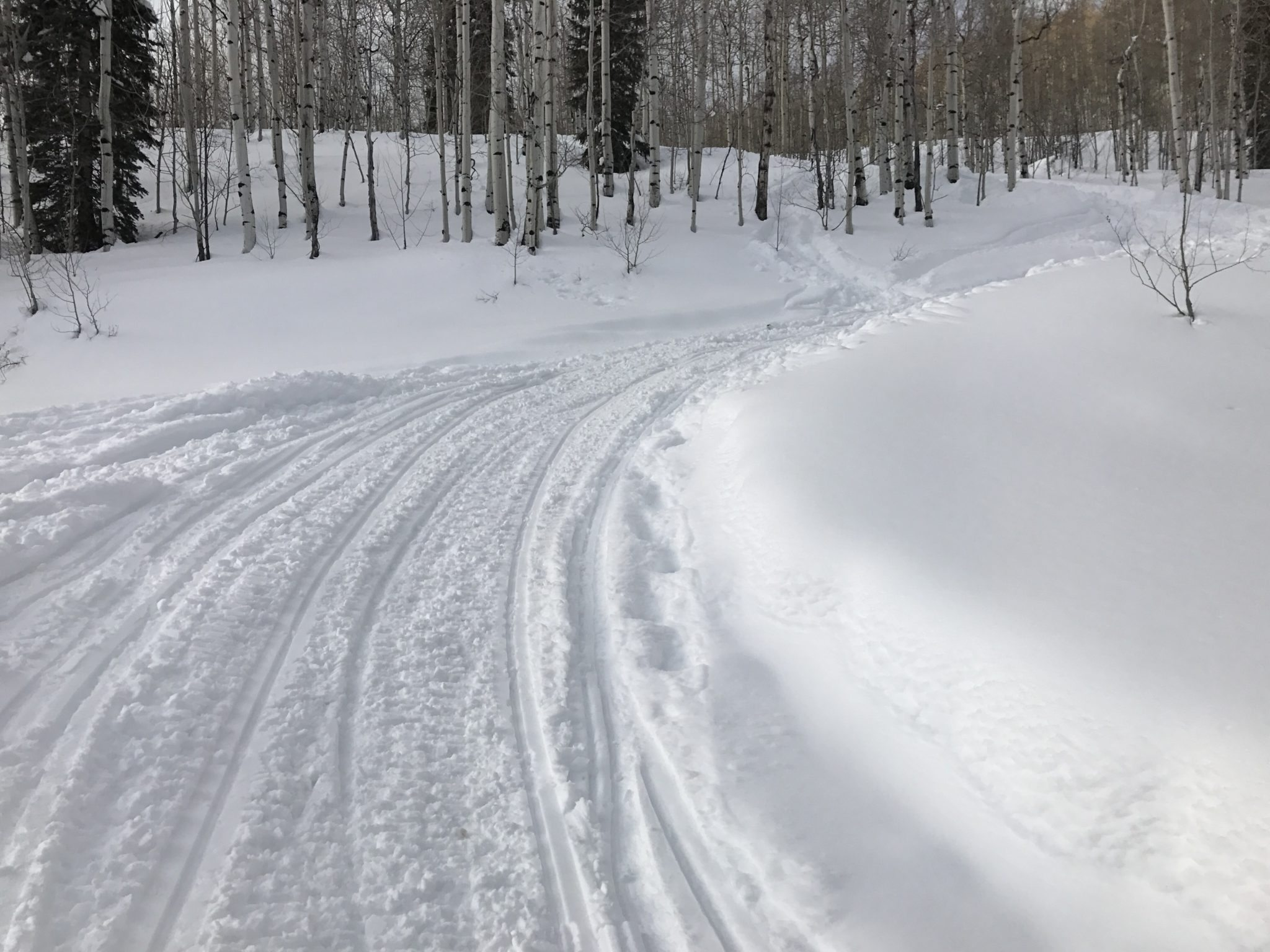 Biking and Snowshoeing Trails at Hermosa Creek Trail