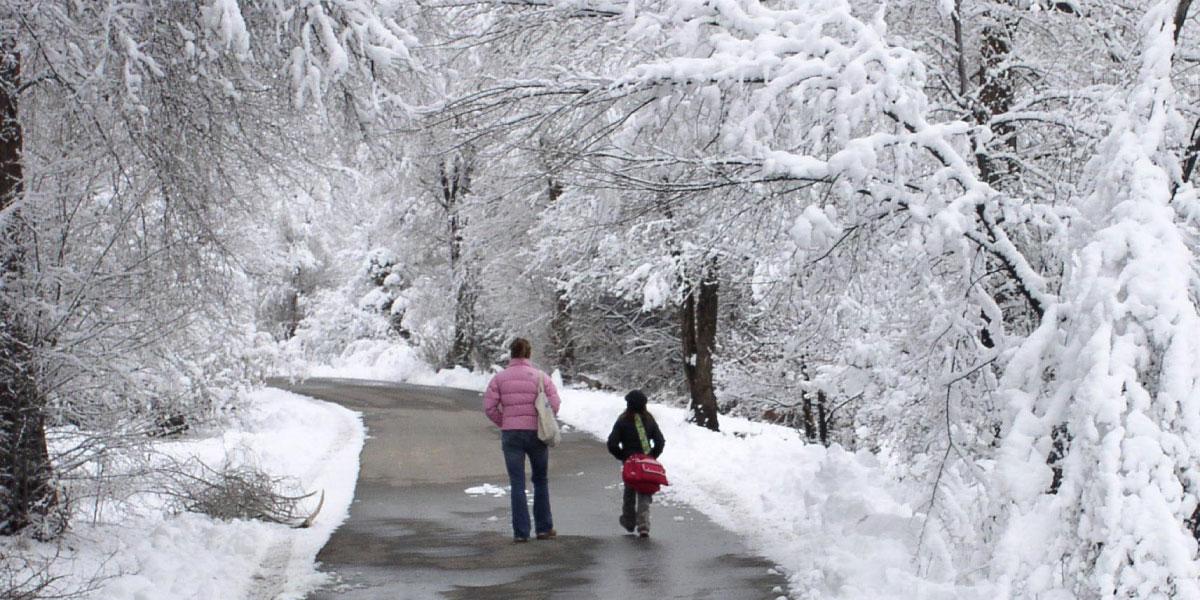 Animas River Trail in Winter