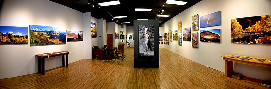 New Wildshots Gallery